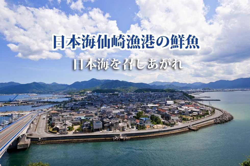 日本海の屈指の漁港仙崎漁港 直送